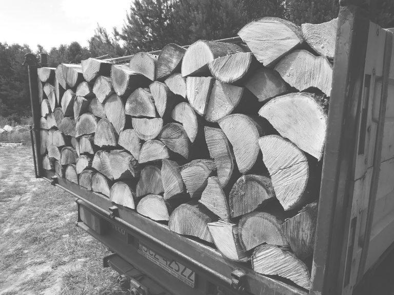 Usługi transportowe drzewa
